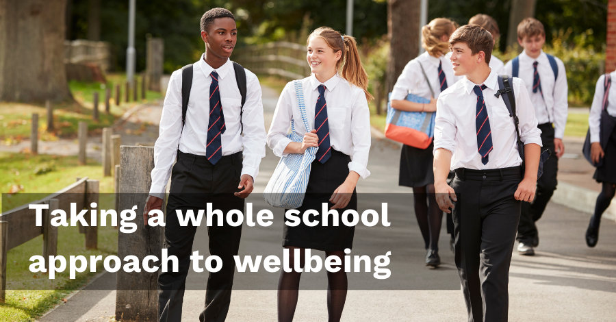 Persona Education Newsletter Nov-20: Taking a whole scholl approach to wellbeing
